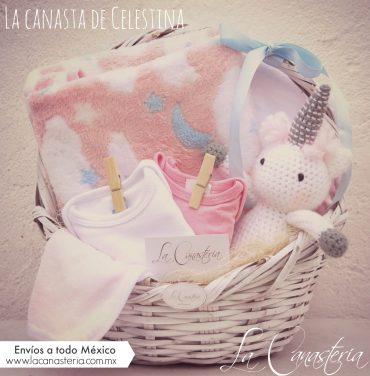 Canasta de regalo fina para recién nacida
