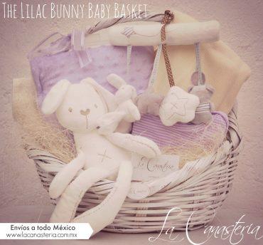 canasta de regalo para bebé, canasta de nacimiento, la canasteria baby baskets, baby baskets en mexico