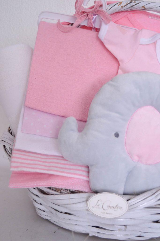 canastas de regalo para bebé con envio a domicilio puebla cdmx queretaro veracruz guadalajara